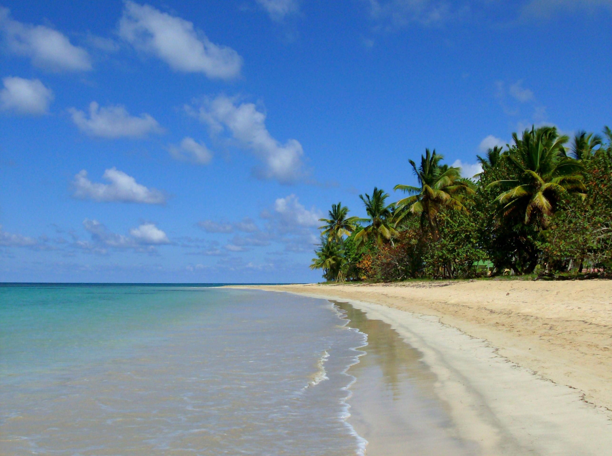 caribean beach 1 by Mittelfranke