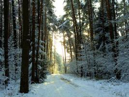 winter walk by Mittelfranke