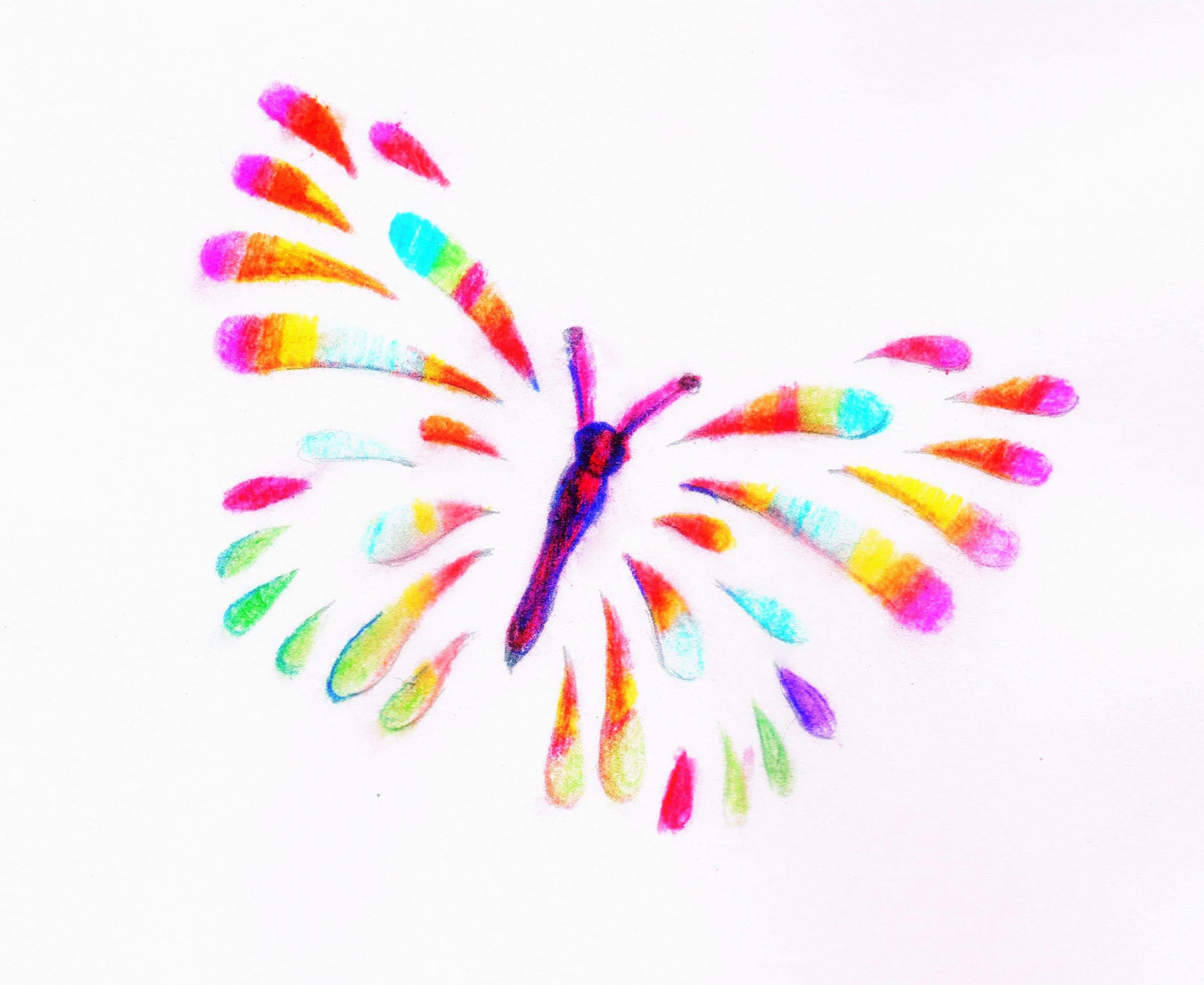 rainbow butterfly by Mittelfranke
