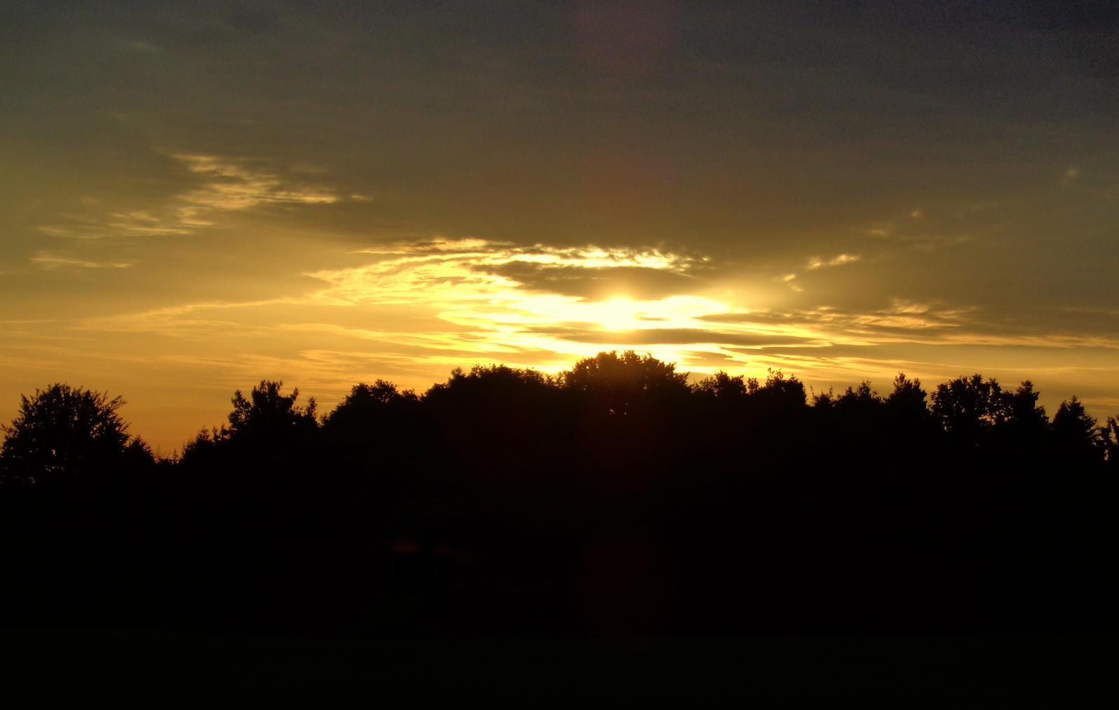 good morning by Mittelfranke