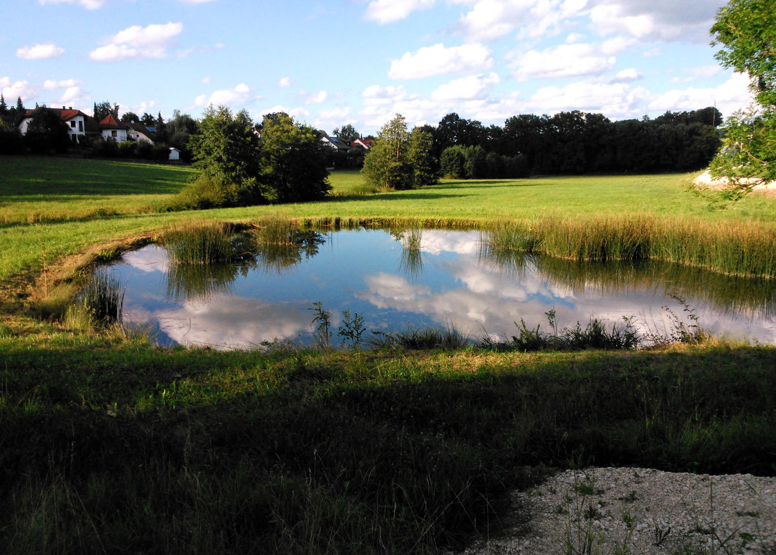 pond and sky by Mittelfranke