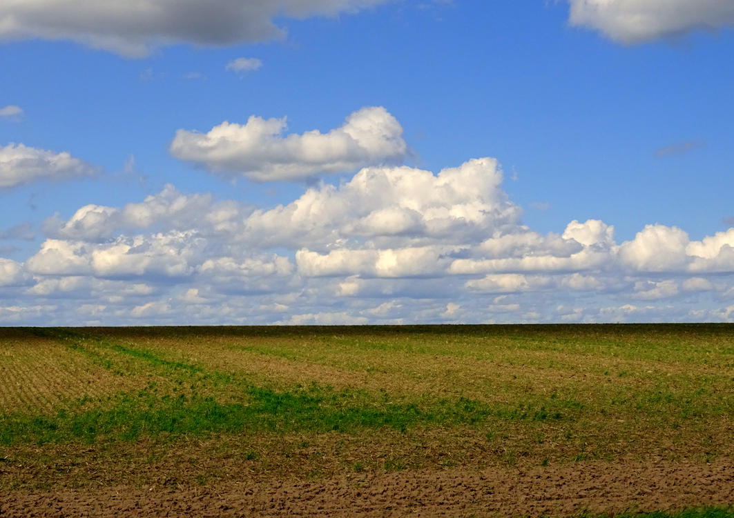 horizon by Mittelfranke