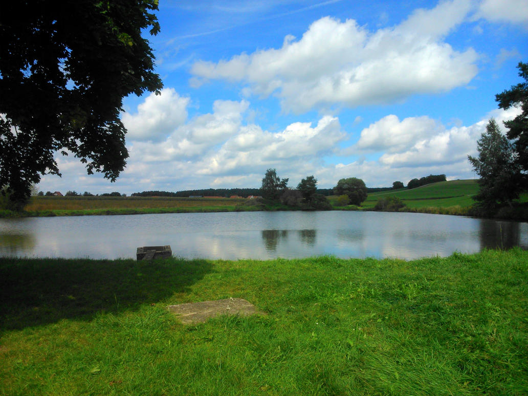 franconian pond by Mittelfranke