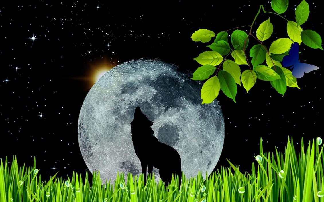 wolf moon by Mittelfranke