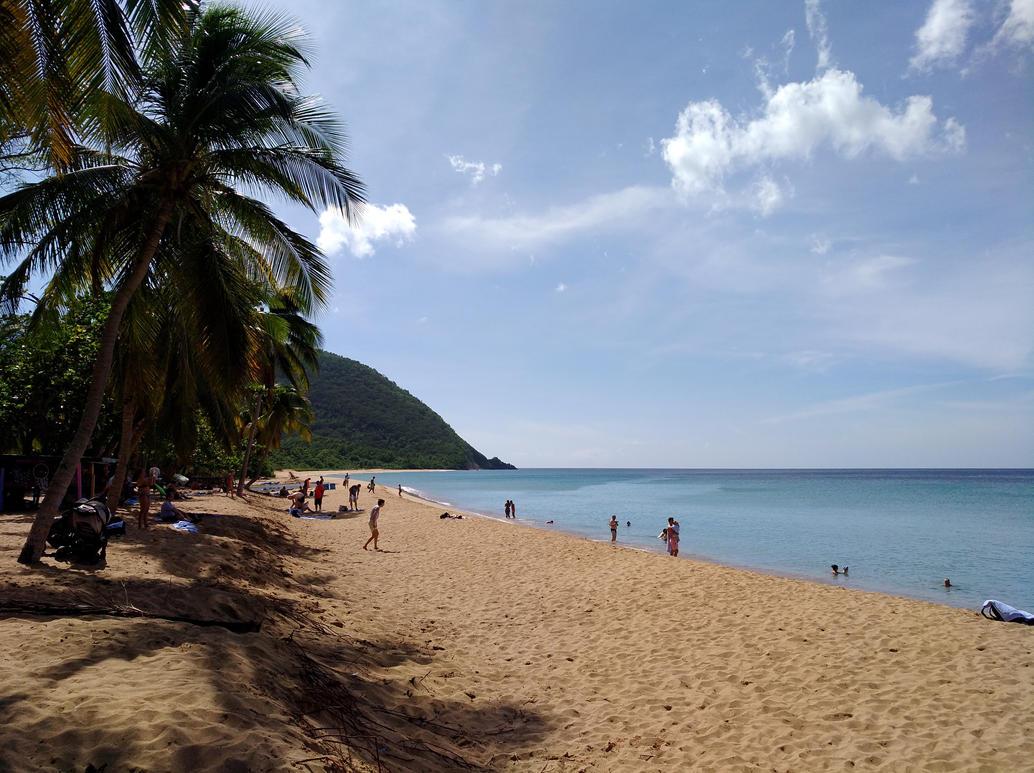 Guadeloupe Beach by Mittelfranke