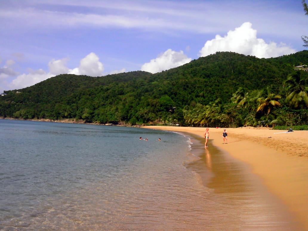 caribbean beach by Mittelfranke