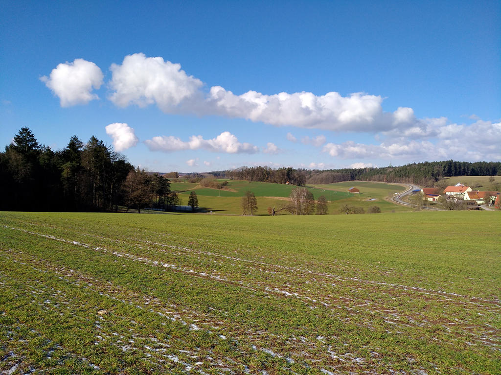 almost springtime by Mittelfranke