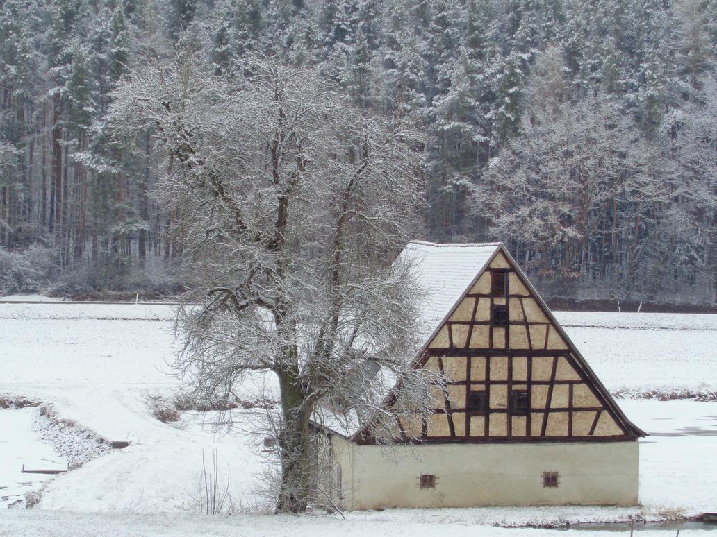 snow again by Mittelfranke