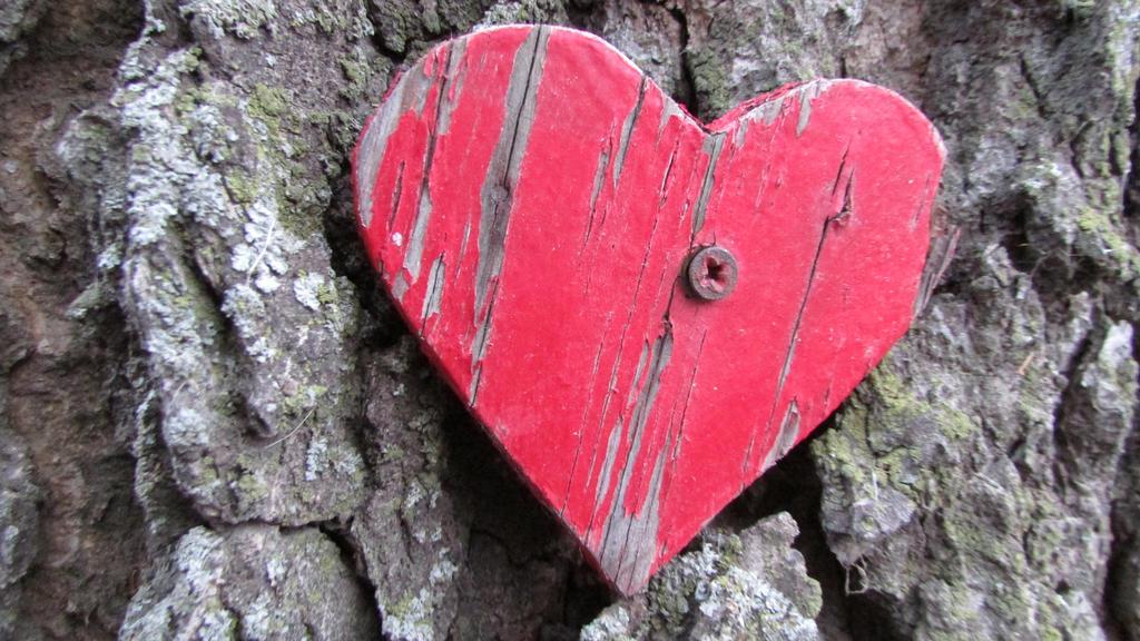 Fallen Heart by elfgirl12