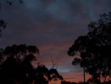 bleeding sunset v.2__