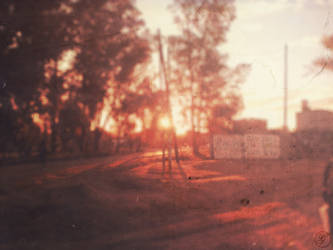 Still day beneath the sun