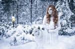 A winter fairy tale