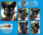 C.L. Raccoon Fursuit Head