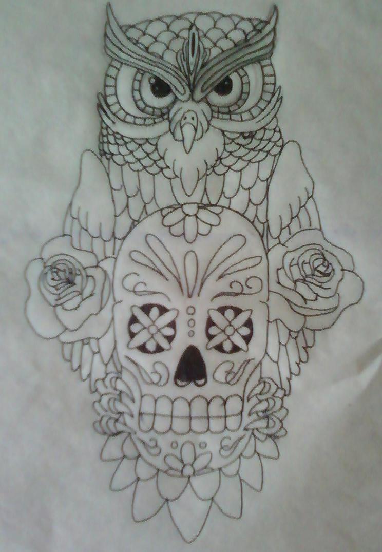 Owl skull illustration