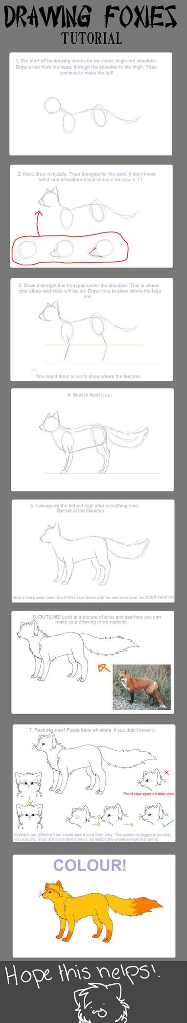 Fox: How to Draw by DarkHolyMagic