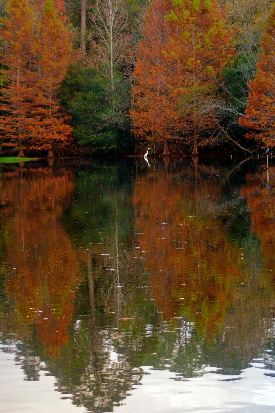 My secret fishing hole by drewii57