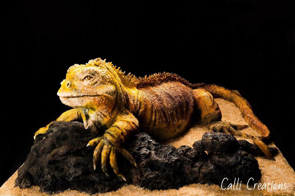 Land Iguana by CalliCreations