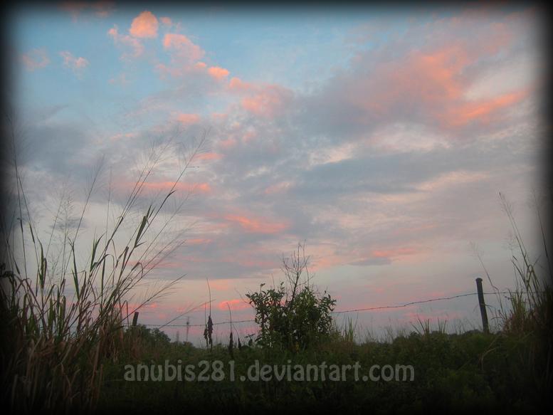Sky 7566 by anubis281
