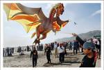 dragon taming by shinsenfreak