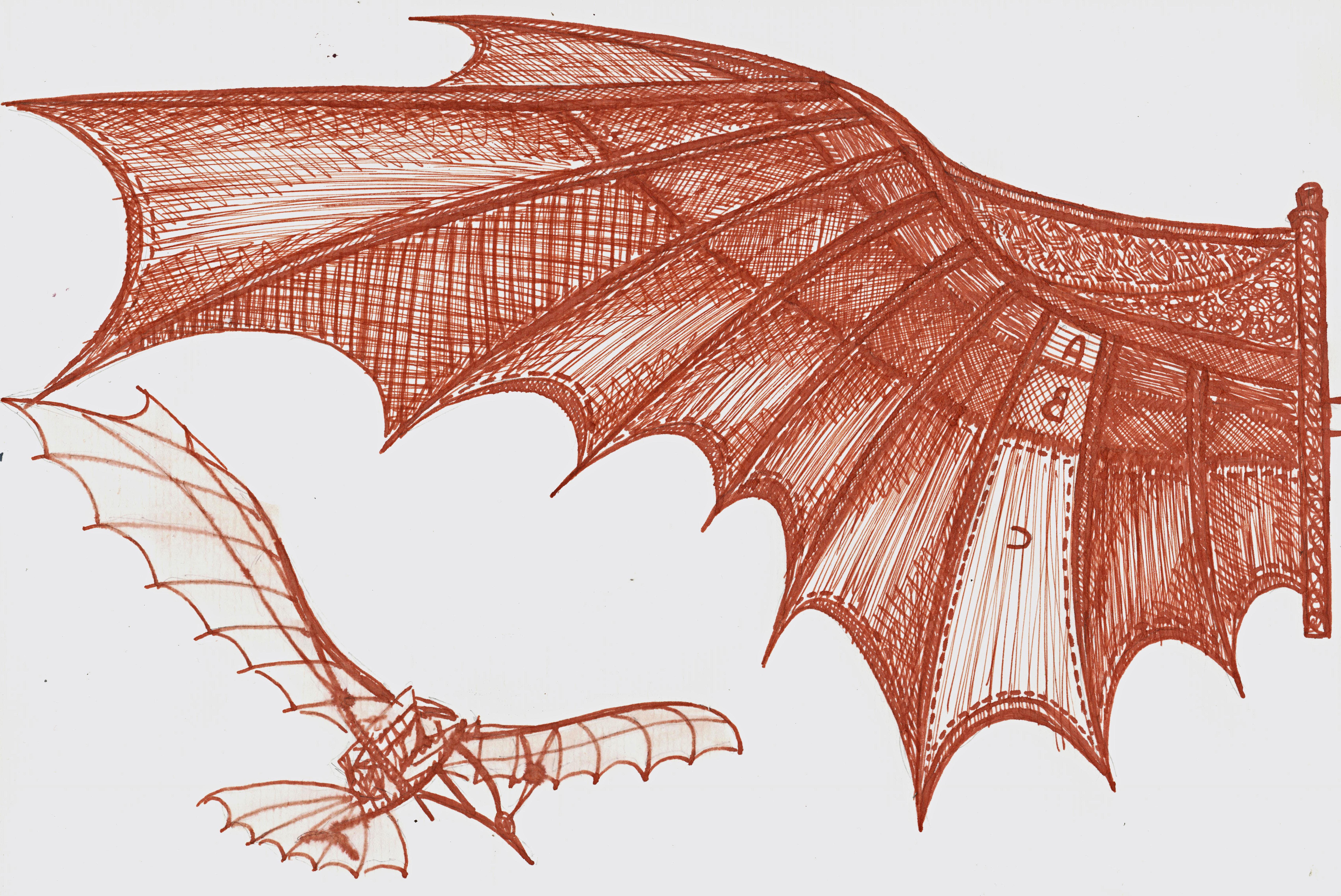 leonardo flying machine