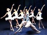 Swan Lake Ballet Scene by dazinbane
