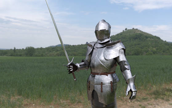 Knight in plate armour with sword
