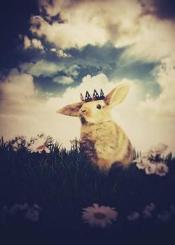 Little Prince: Bunny
