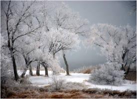 Winter Wonderland by SuicideBySafetyPin