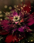 Blooming Light