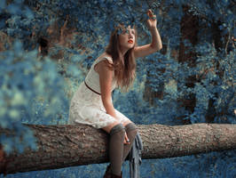 Lost in the woods by surrealistycznie