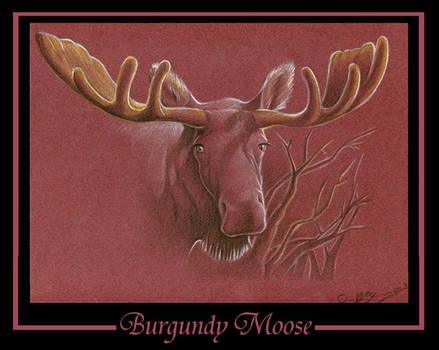Burgundy Moose