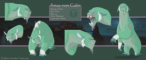Amay-rum Gabir