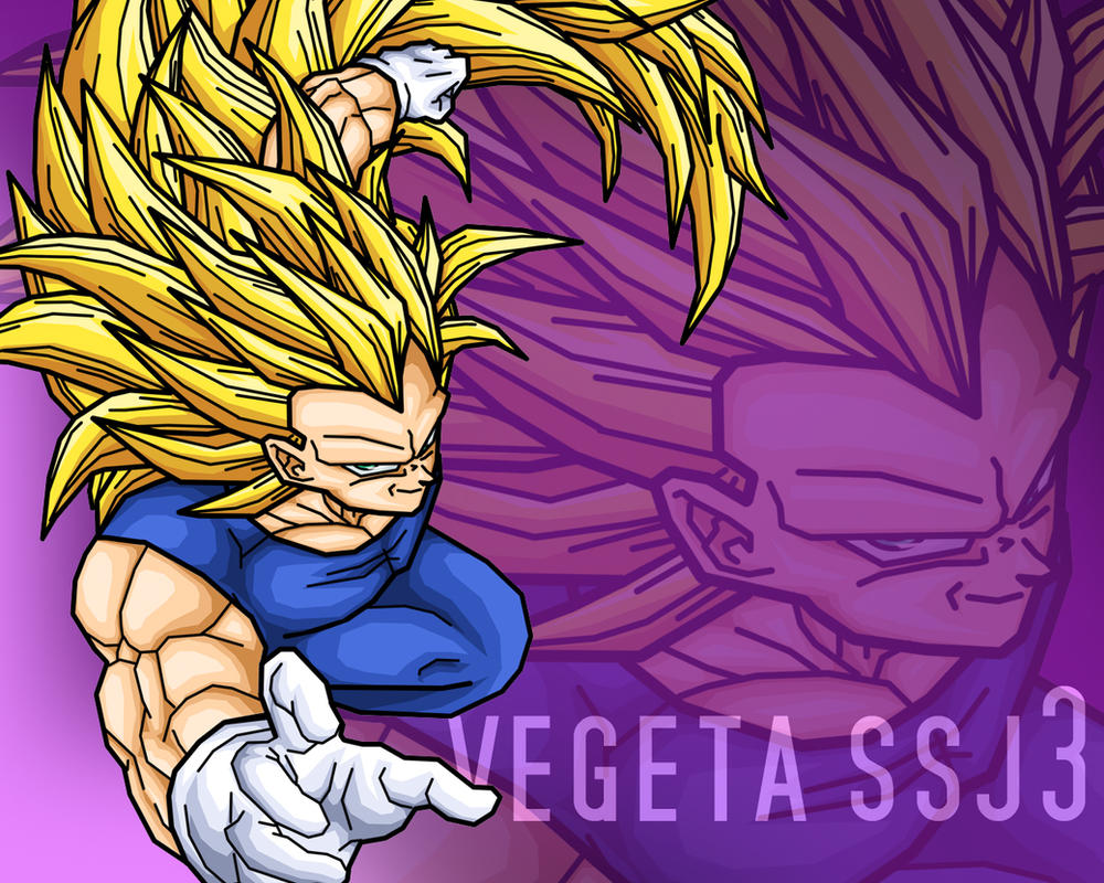 Vegeta Super Saiyan 3 By Alessandelpho