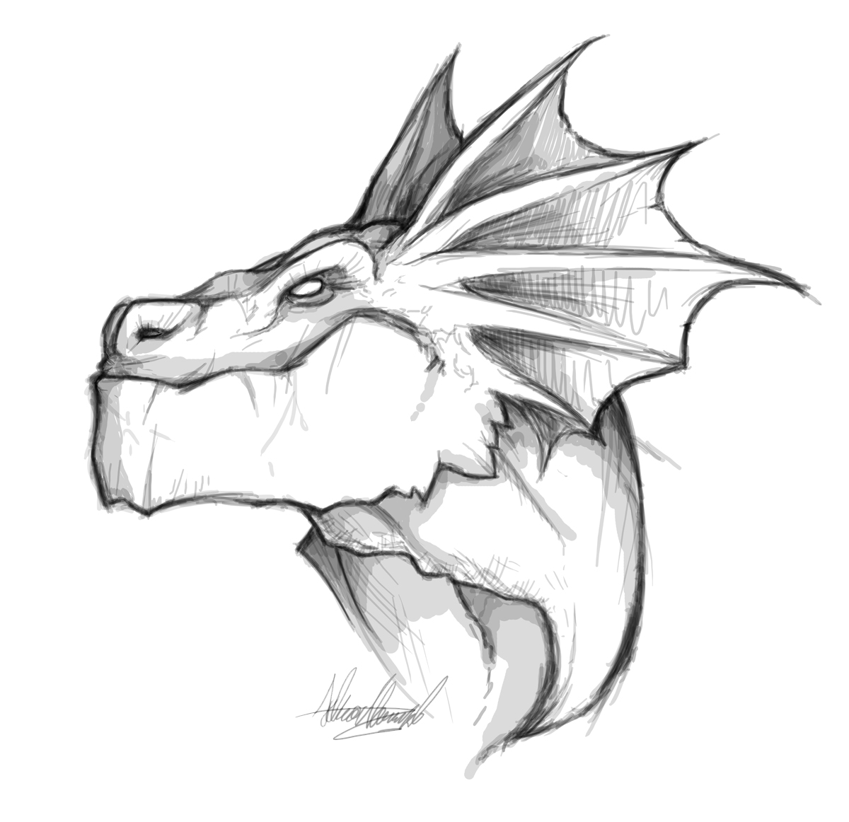 How To Draw Dragon Faces