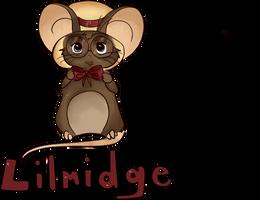 Lilmidge by Finnys