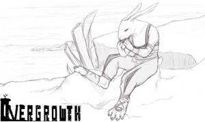 .:A Rabbit in the Coastline:.