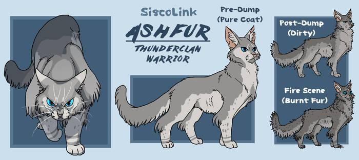 Warriors of The Stars: Ashfur Design