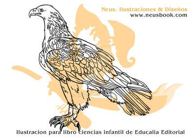 Muestra Dibujos Libro ciencias 09 by Nixhy