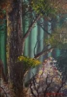 Fairy tree by LuciferArcadia