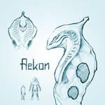 Aekon Concept
