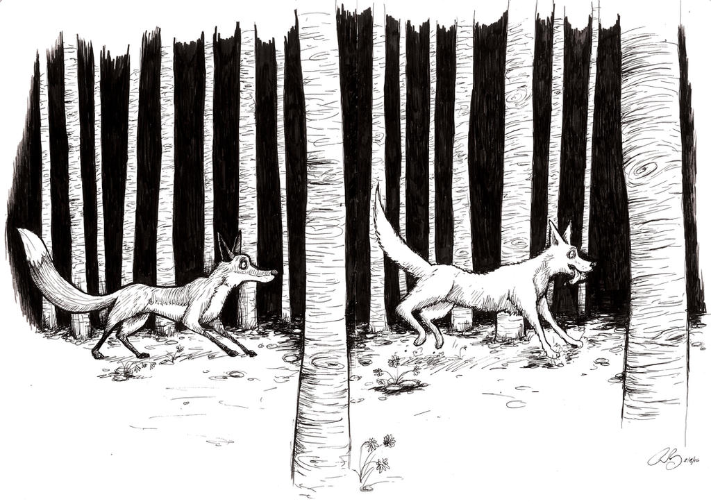 Fox and Coyote by chrisbonney