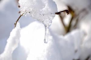 A Winter Dream... 2 by BurnerPat