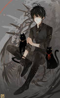 Abusing cats for composition by Shikaama