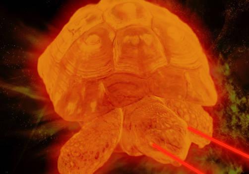 evil-tortoise