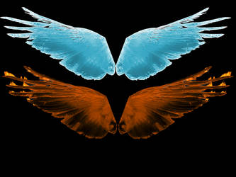 Fire and Ice Wings