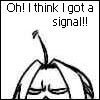 I think I got a signal