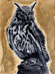Eagle Owl by Marianto