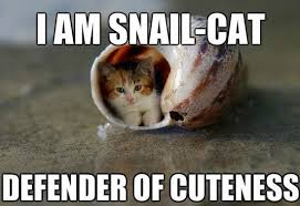snail cat by smoshlover6