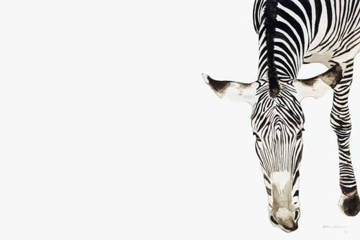 Zebra Watercolor