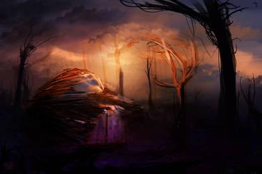 Wonder Hill by AmitSadik